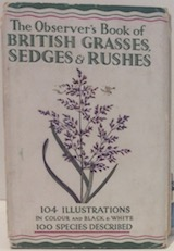 British Grasses, Sedges and Rushes 1942 (7)