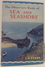 Sea and seashore 1962 (31)